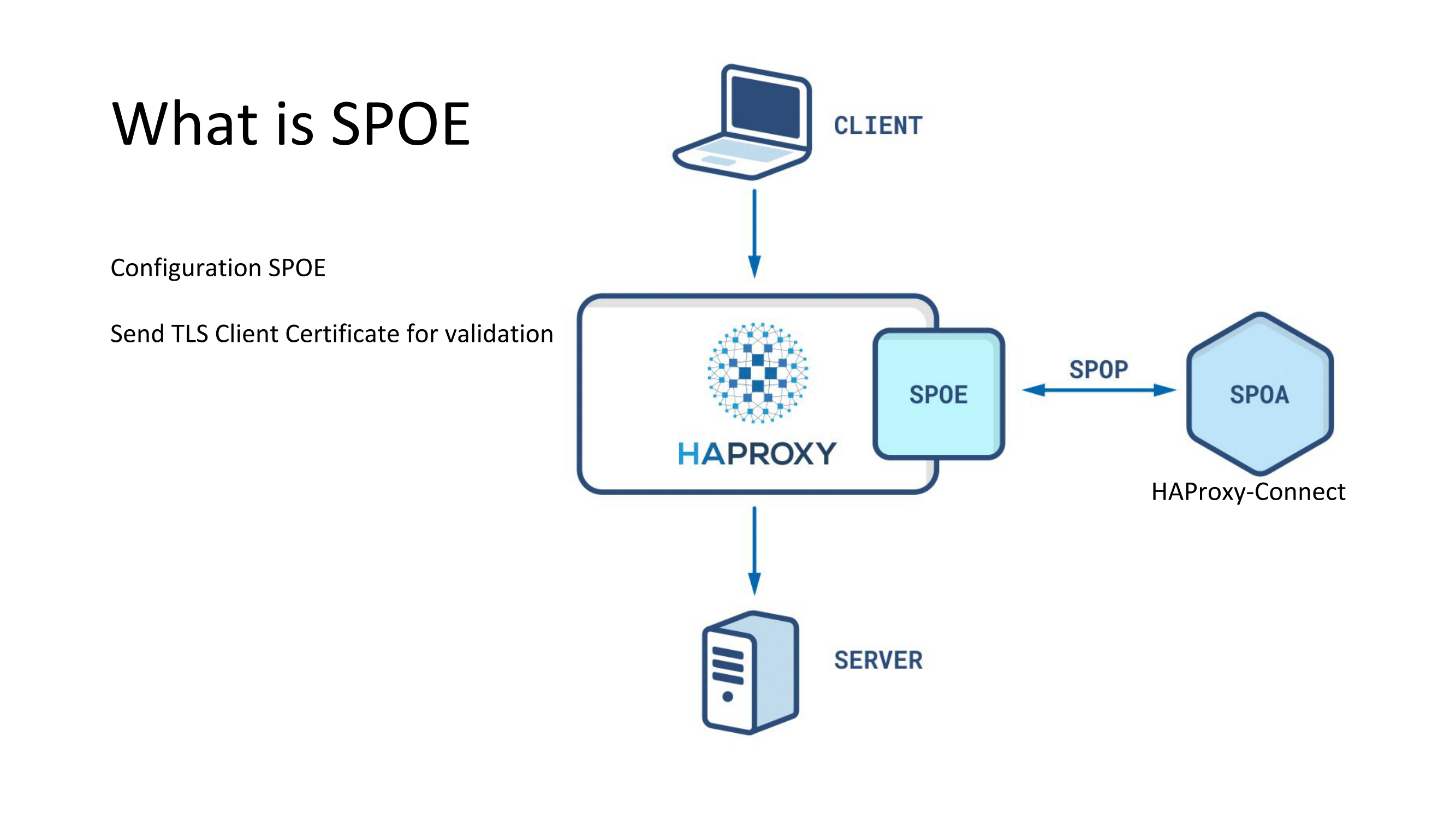 haproxyconf2019_building a service mesh with consul and haproxy_pierre souchay_28